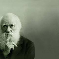 News-Darwin